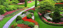 Colors in the Garden – How to Use Garden Colors