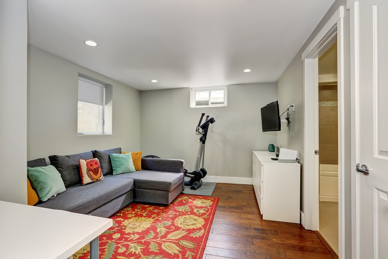 basement gym and TV room with area rug