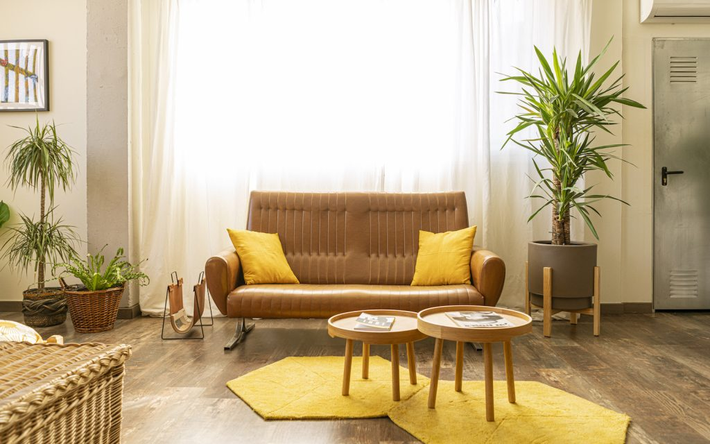 Brown interior design with yellow accent colors