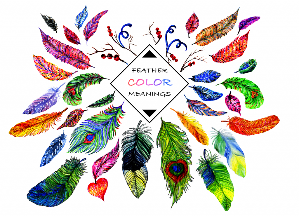 Feather Color Meanings Illustration
