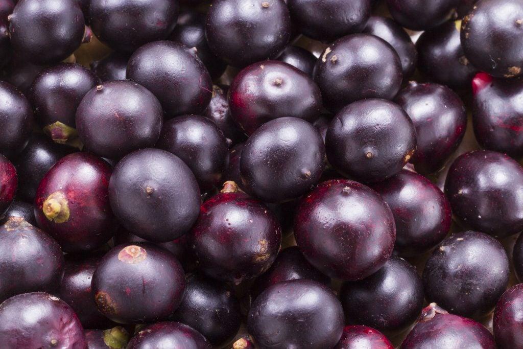 Closeup of fresh acai berries