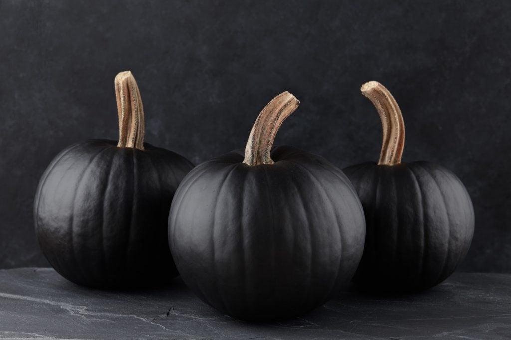 Black pumpkins on a dark textured background