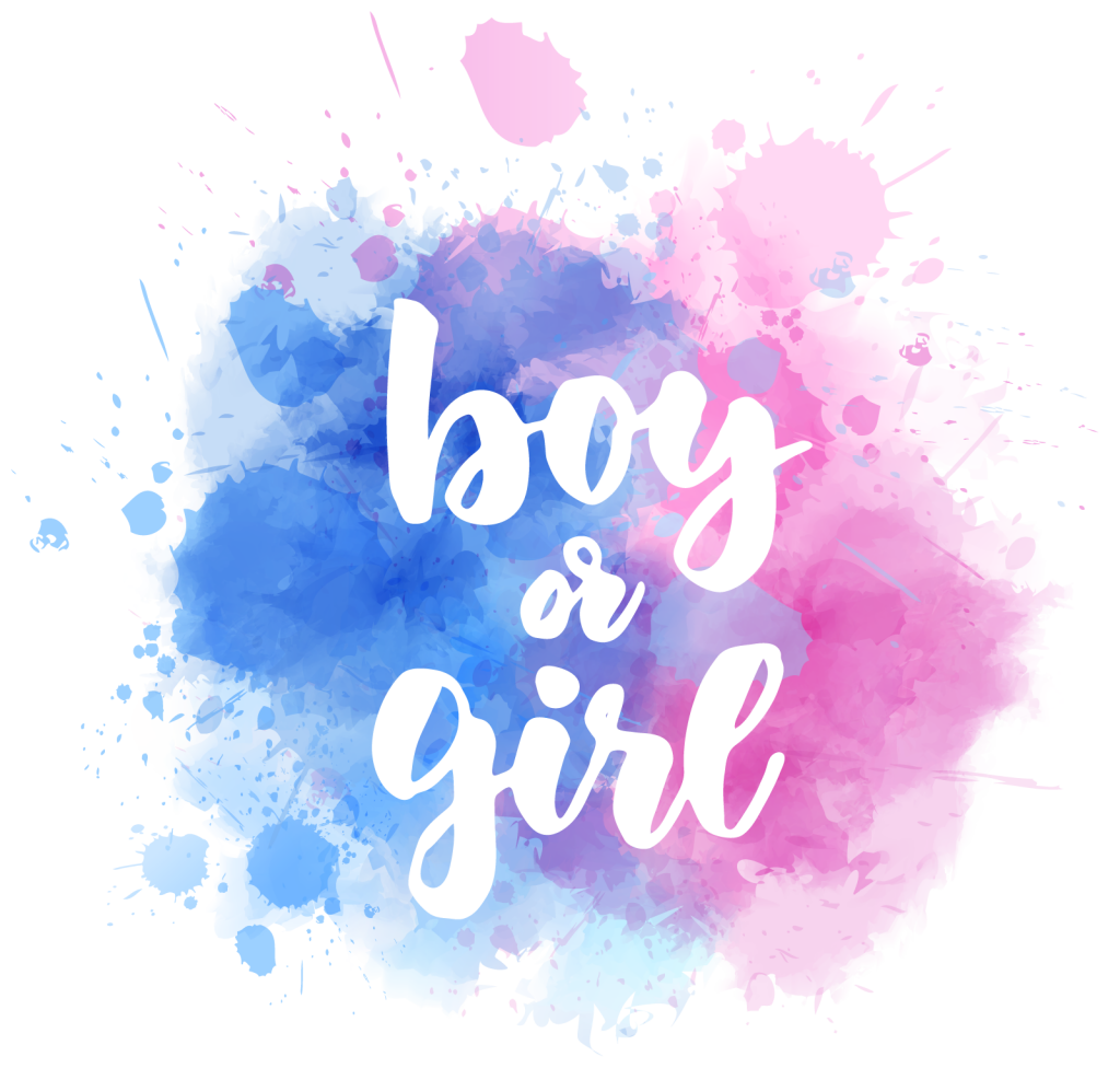 Blue and pink graphic symbolizing boy and girl gender colors