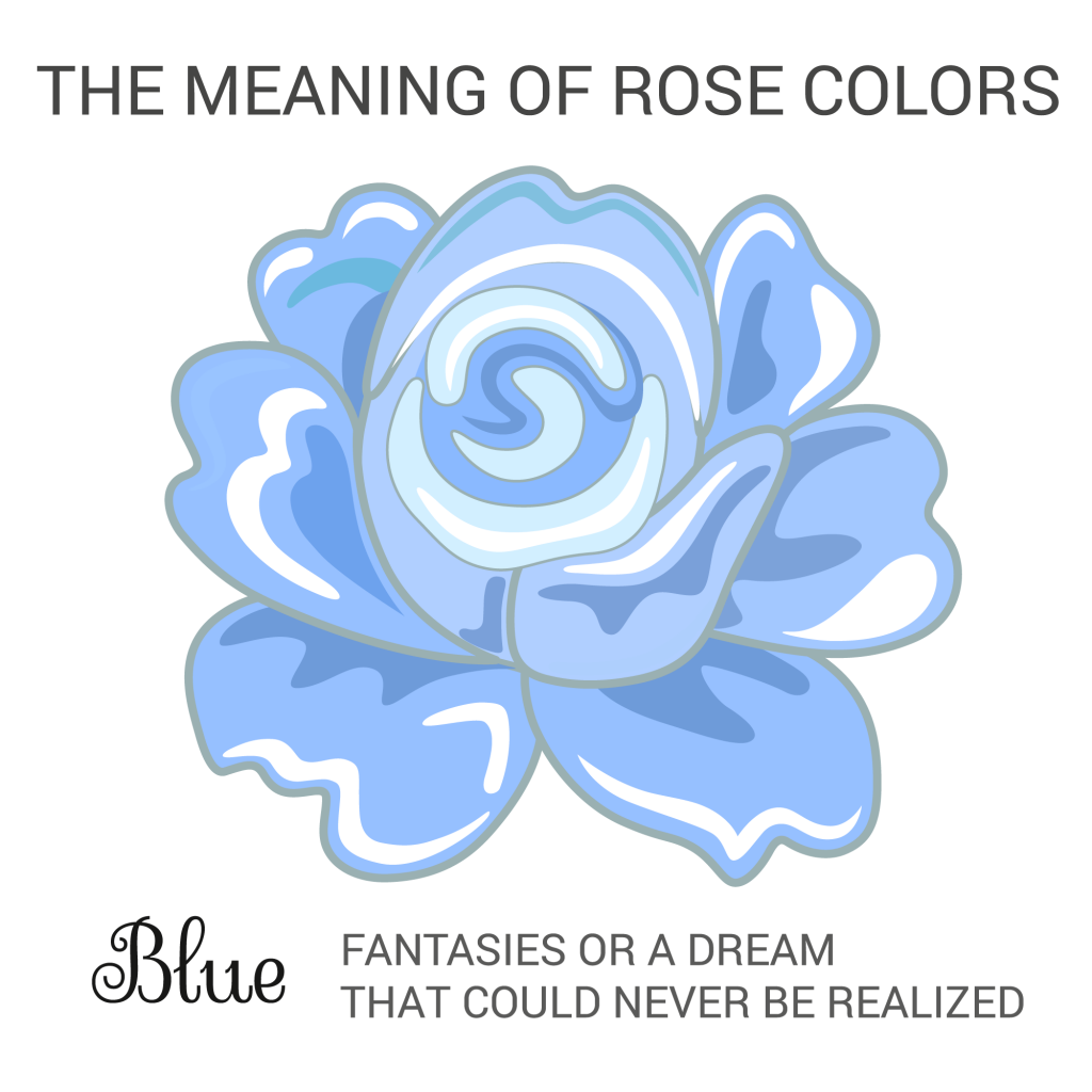 Rose Color Meanings What Does Each Shade Symbolize