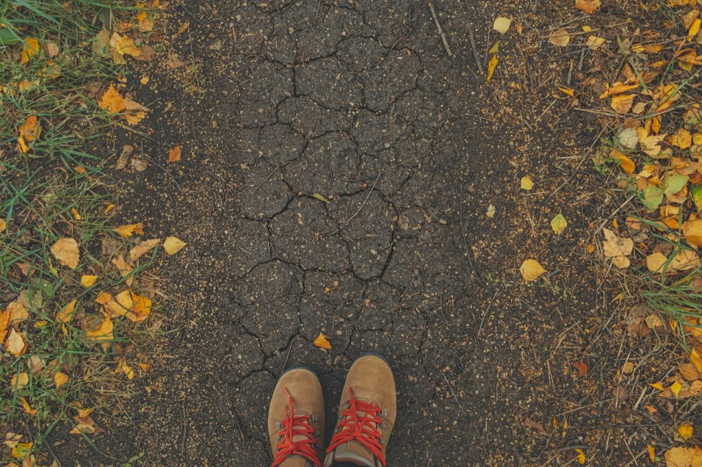 Casual shoes in earth tones with bright laces and colorful autumn scene with fallen leaves