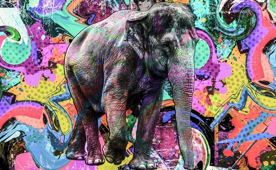 Thai elephant on colorful background