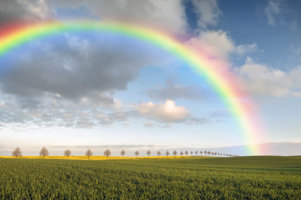 Rainbow in many colors over field in spring