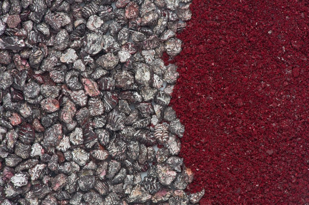 Dried and crushed cochineal insects used to make red pigment dye