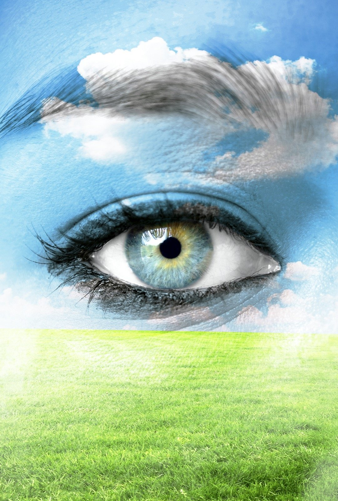 Close-up of eye seeing nature with green grass and a blue sky