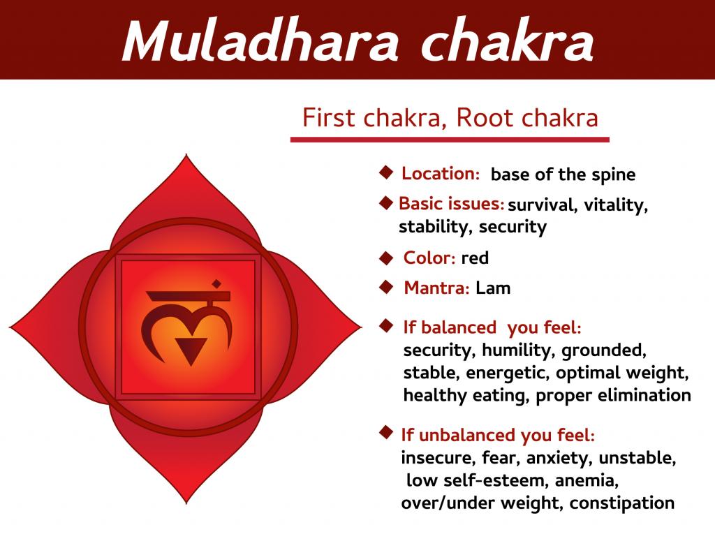 Muladhara first chakra infographic