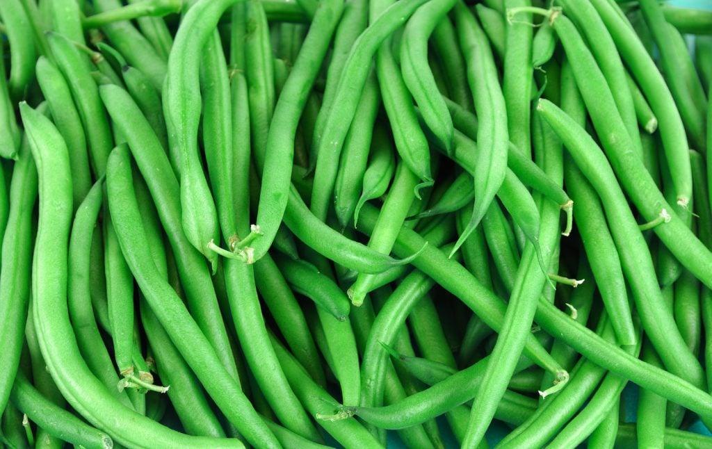 Closeup of vibrant green beans