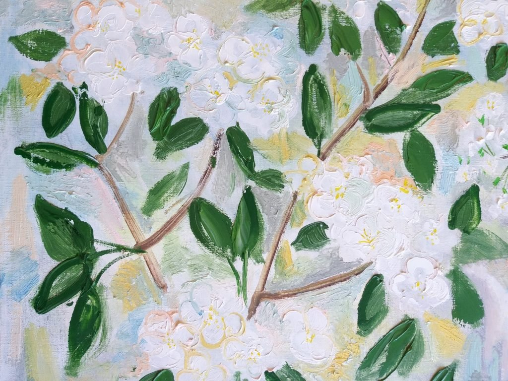 Oil painting of spring bloom fruit tree branches with white flowers