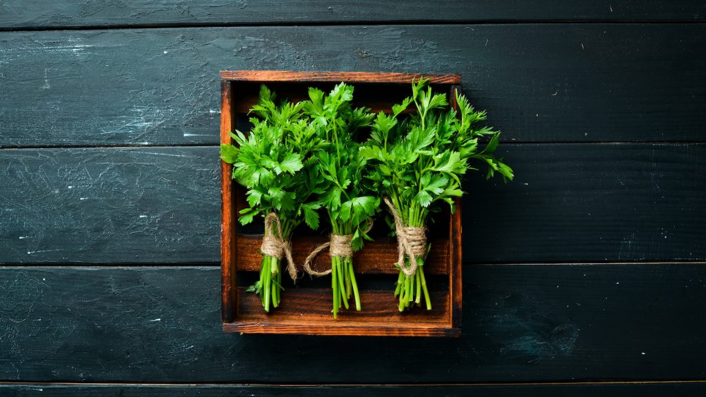 Top view of fresh parsley on a wooden background