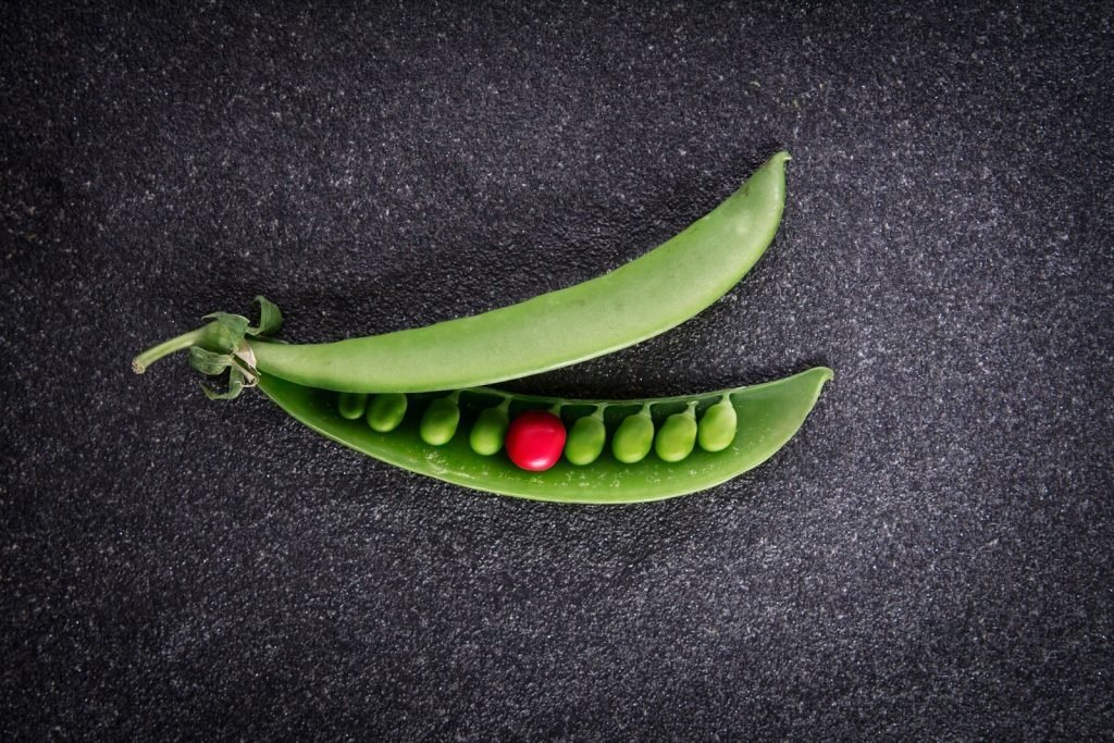 Green peas and one dominating red colored pea on a dark background