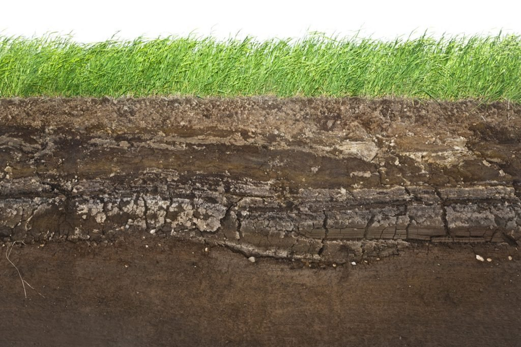 Ground view of green grass and brown underground soil layers beneath