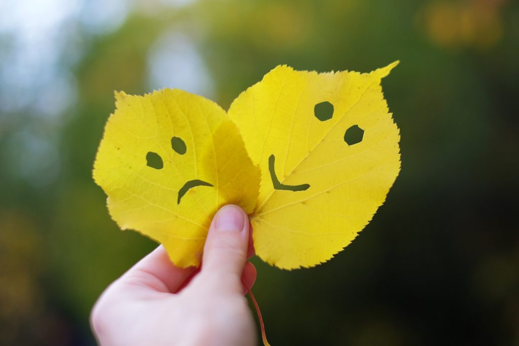 Hand holding yellow autumn leaves with sad and happy face