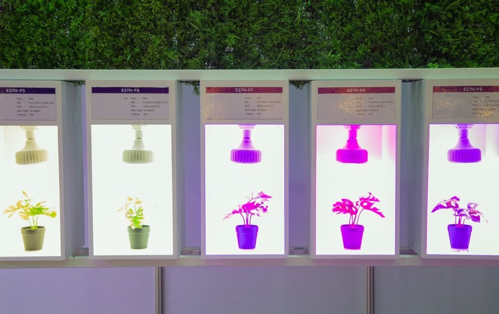 Different colors of artificial LED lighting for growing plants indoors