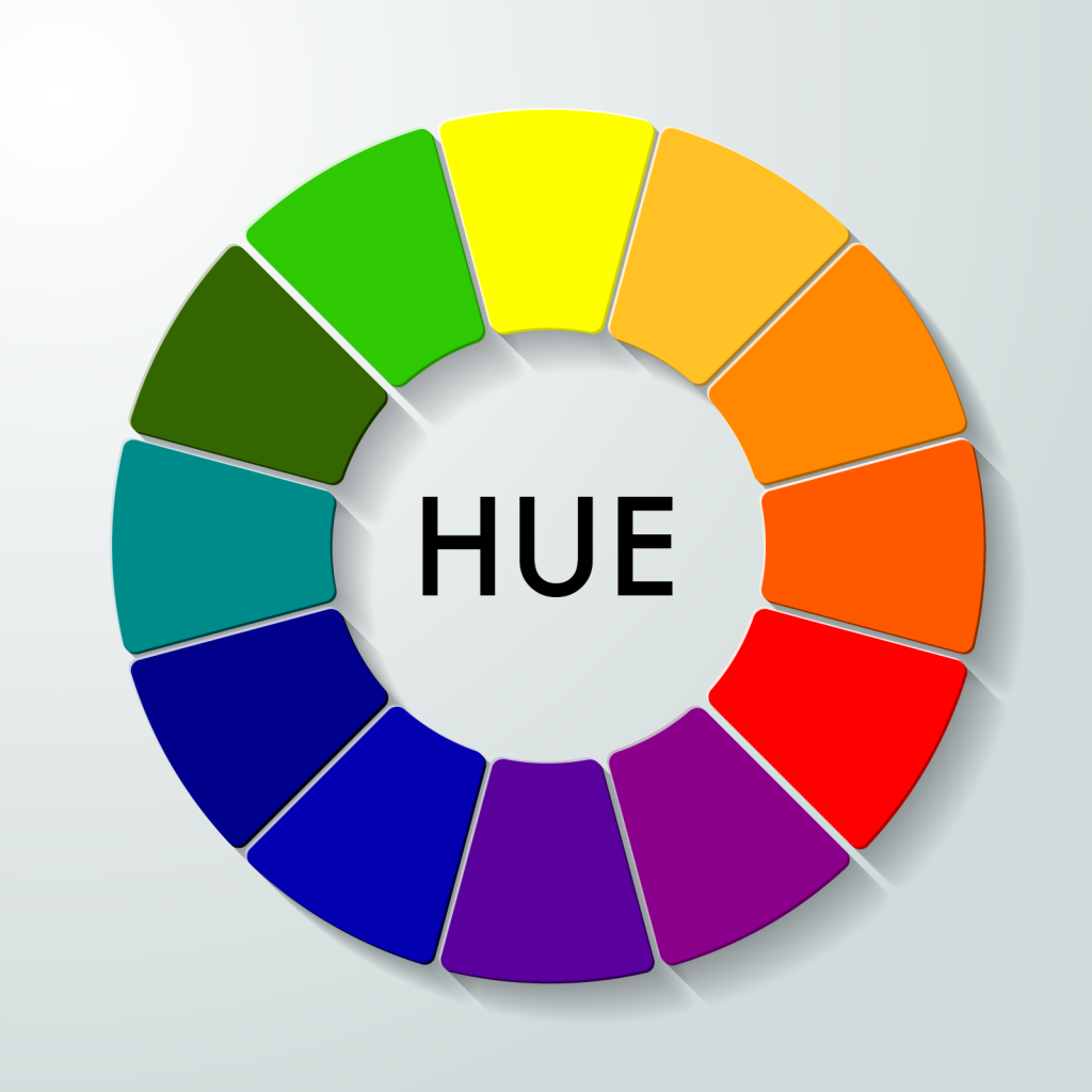 Color wheel with 12 hues on gray background