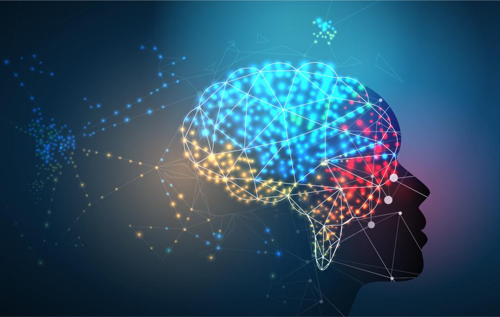 Human brain in different colors representing memory centers