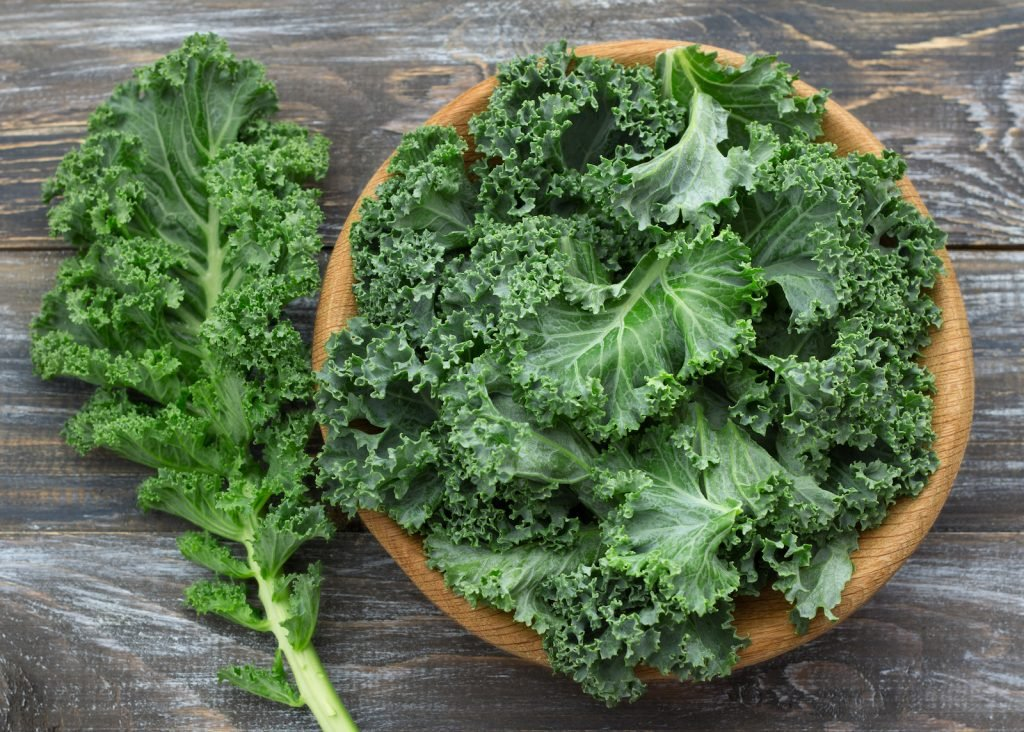 Fresh green curly kale leaves in a wooden bowl standing on a wooden table