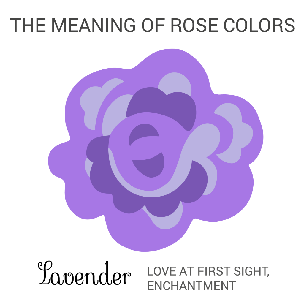 purple lavender rose color meaning infographic