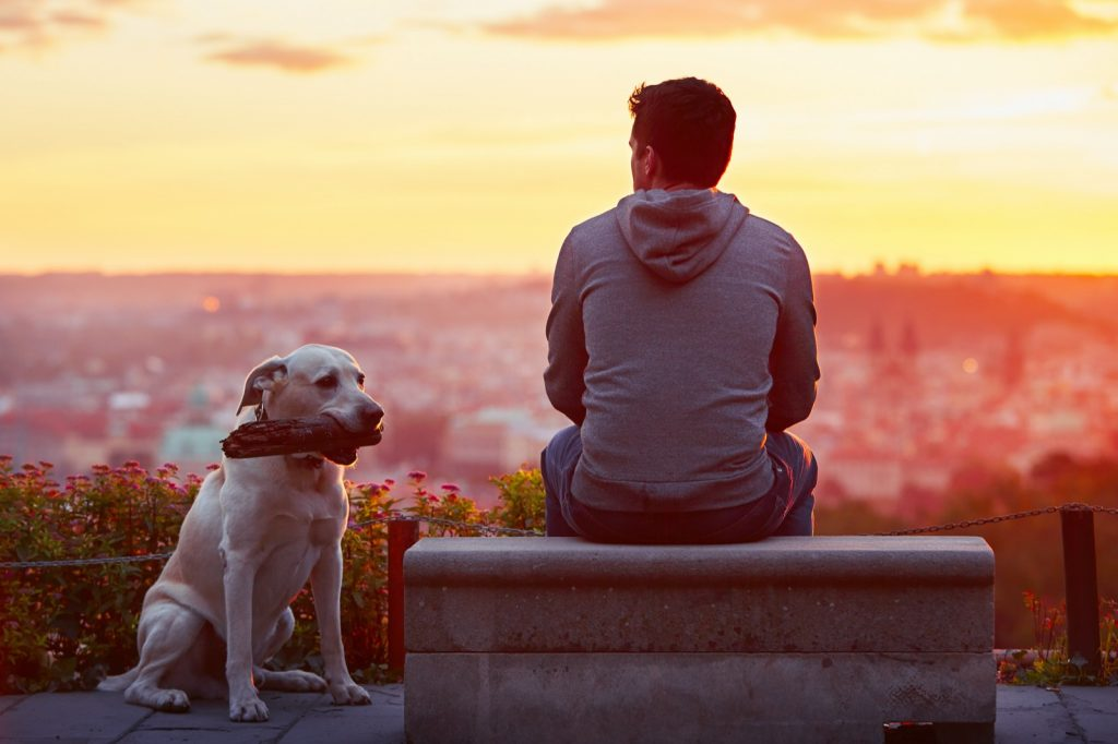 Man with his dog watching the sunrise