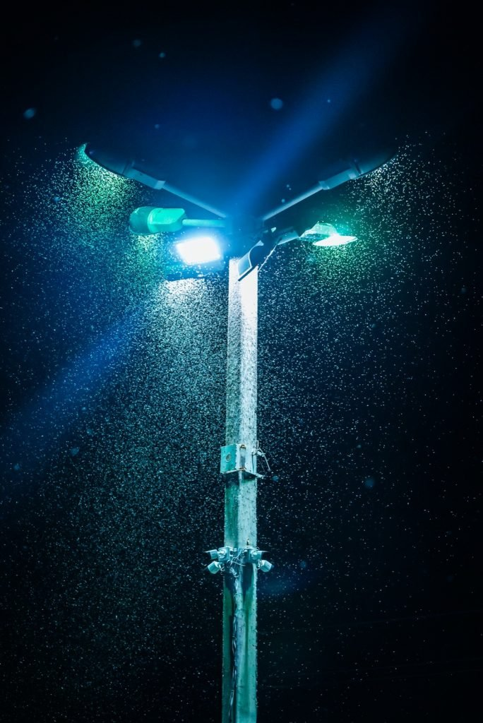 Many mosquitoes in field around lights on lamp post