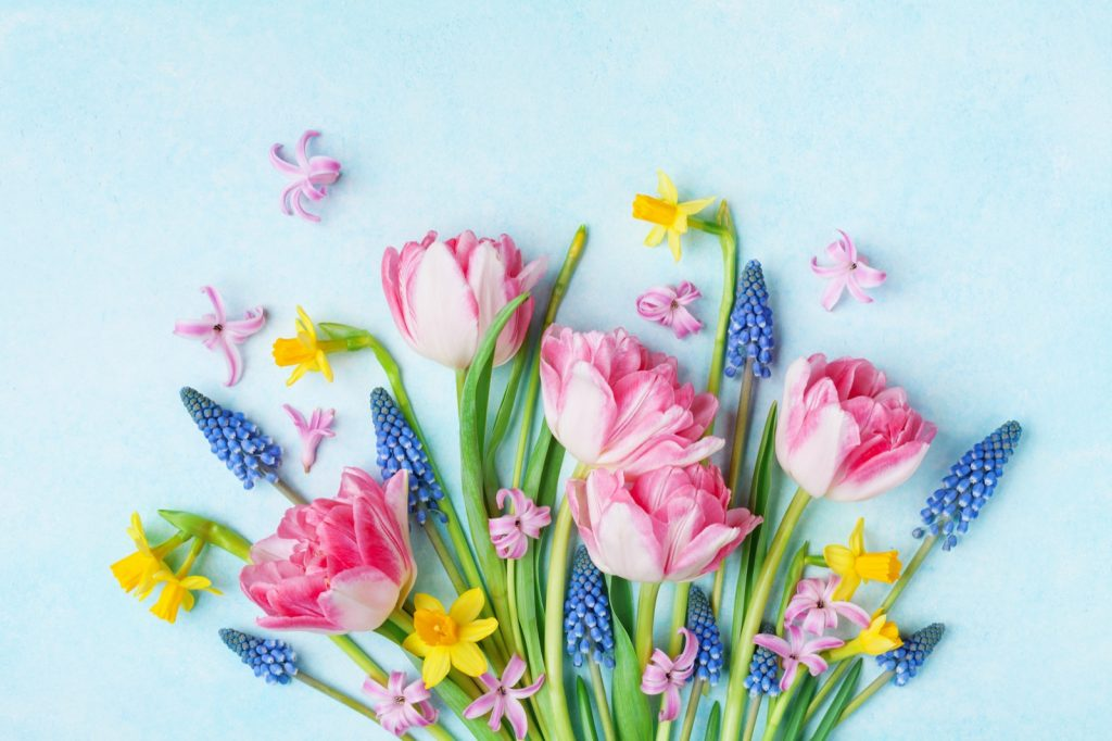 Mother's Day bouquet of colorful spring flowers on pastel blue background