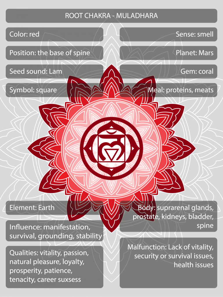Muladhara root chakra symbols and meanings