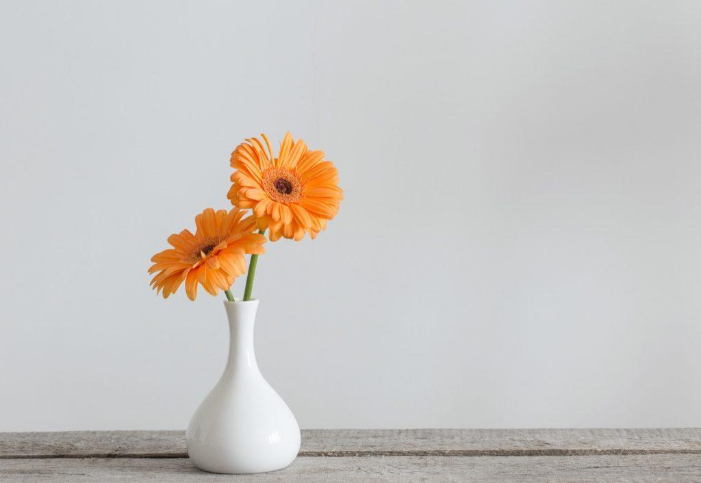 Orange Gerbera plant in vase on old wooden table