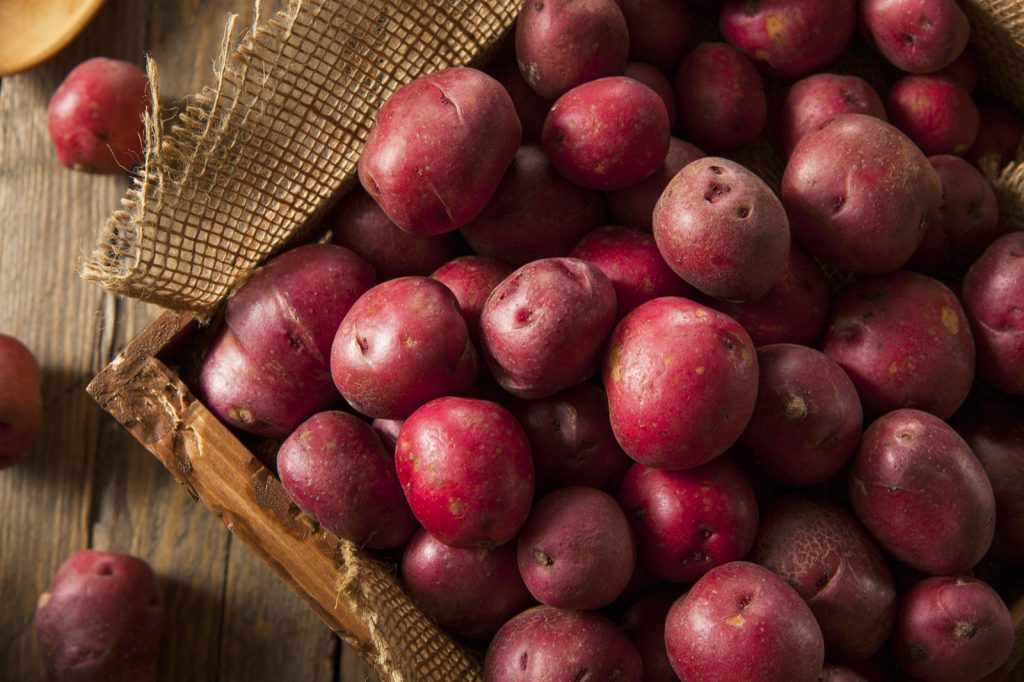 Organic raw red potatoes in wooden basket