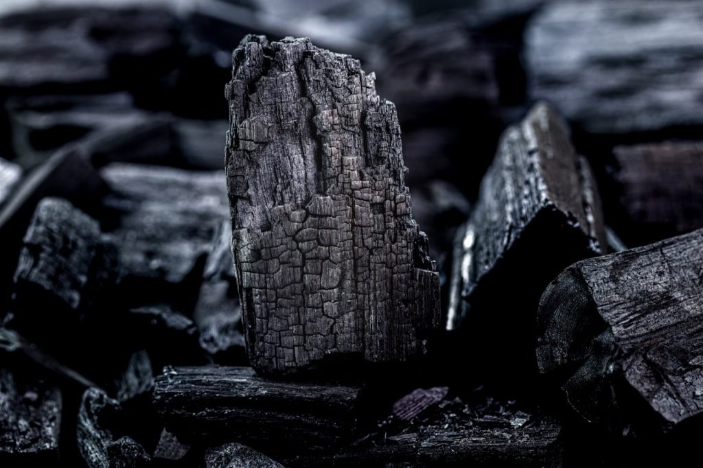 Pieces of black charcoal in focus