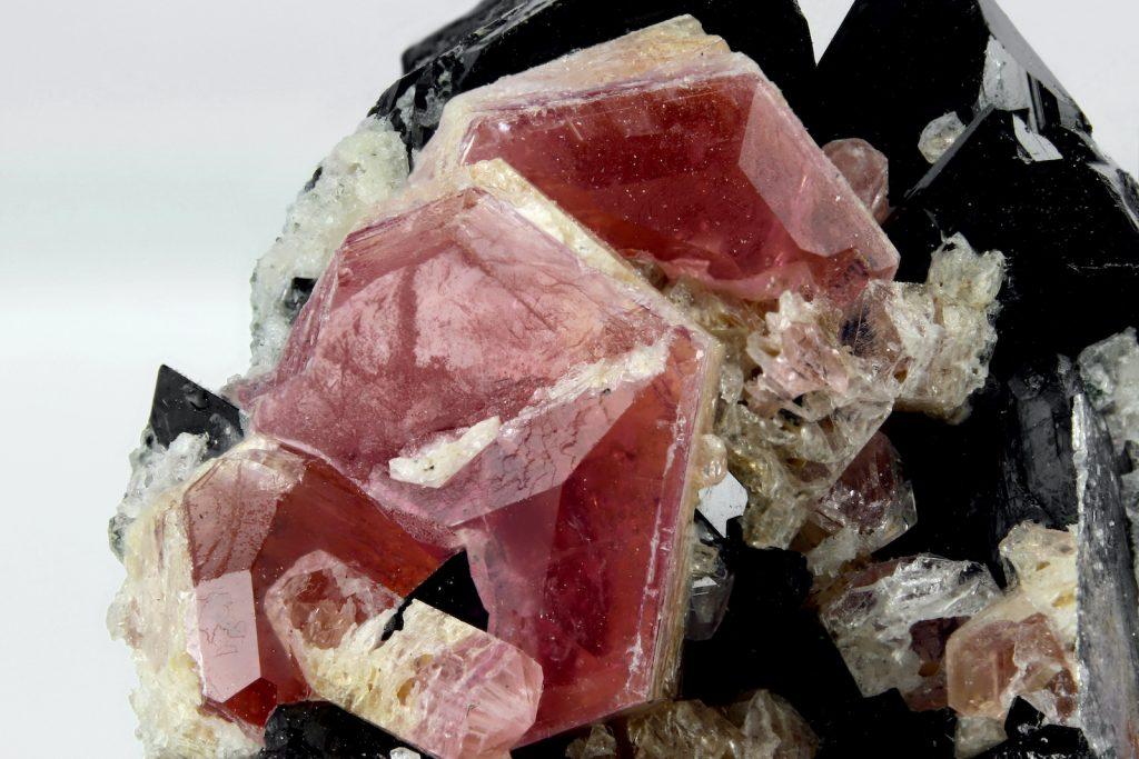Closeup of pink pezzottaite crystals on black schorl