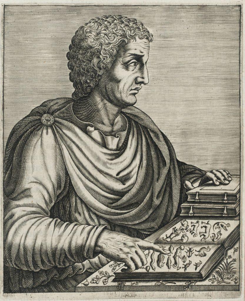Historical portrait of Pliny the elder