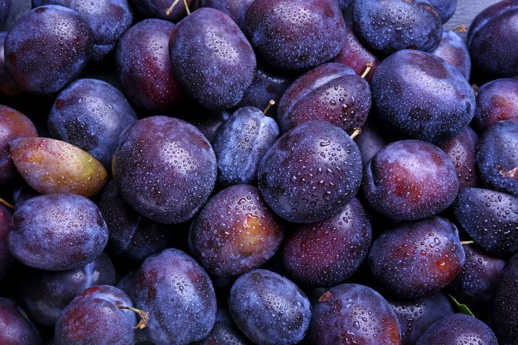 Pile of plums with dew on them