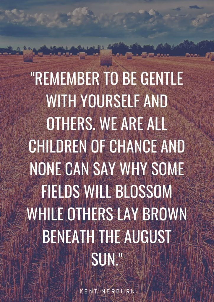 Quote about brown: Remember to be gentle with yourself and others. We are all children of chance and none can say why some fields will blossom while others lay brown beneath the August sun. Kent Nerburn