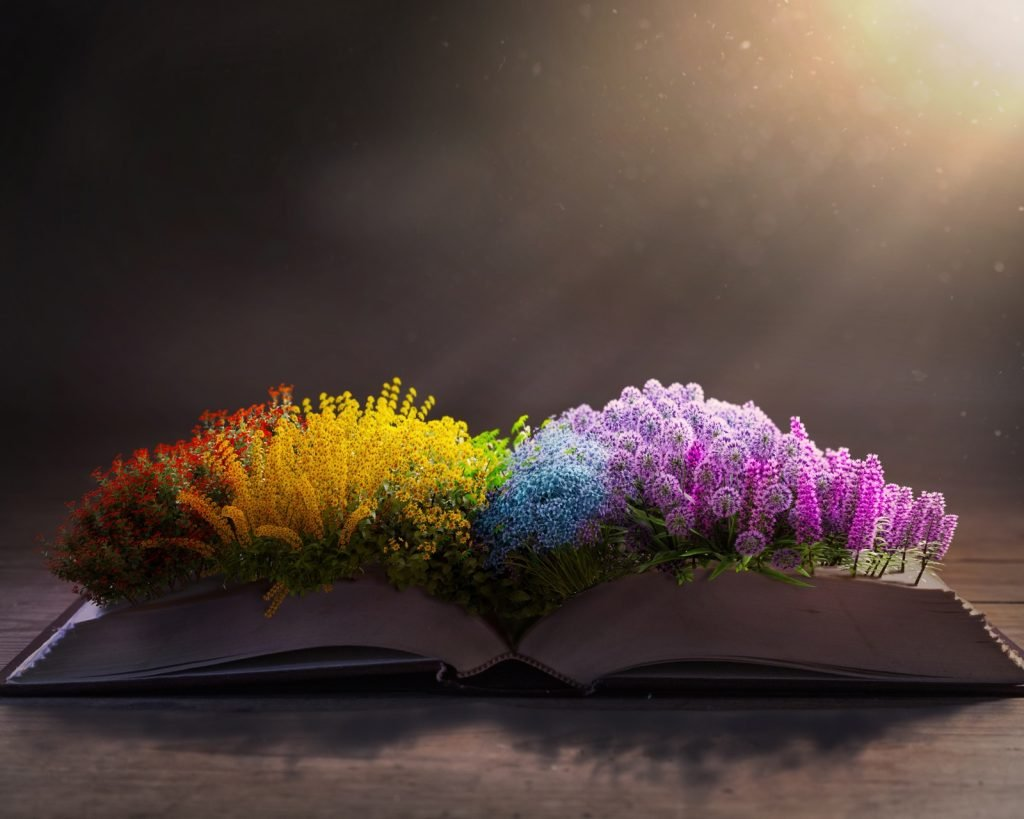 Rainbow colored flowers on the pages of an open Bible