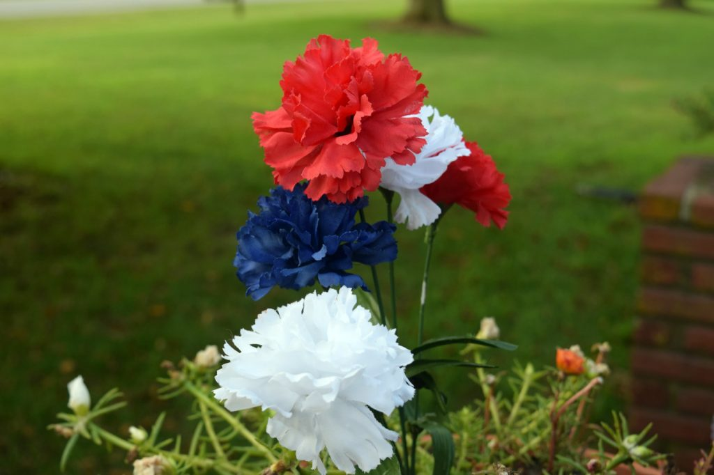 Red, white, and blue flowers outside American home