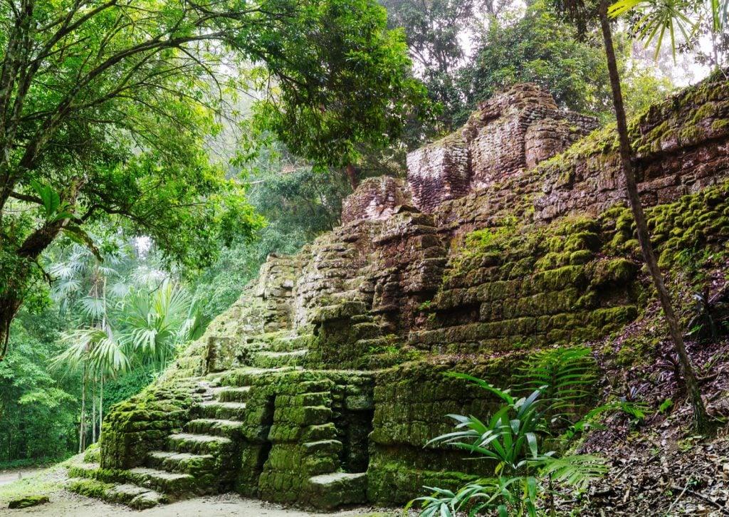 Tikal Mayan temple ruins in the jungle