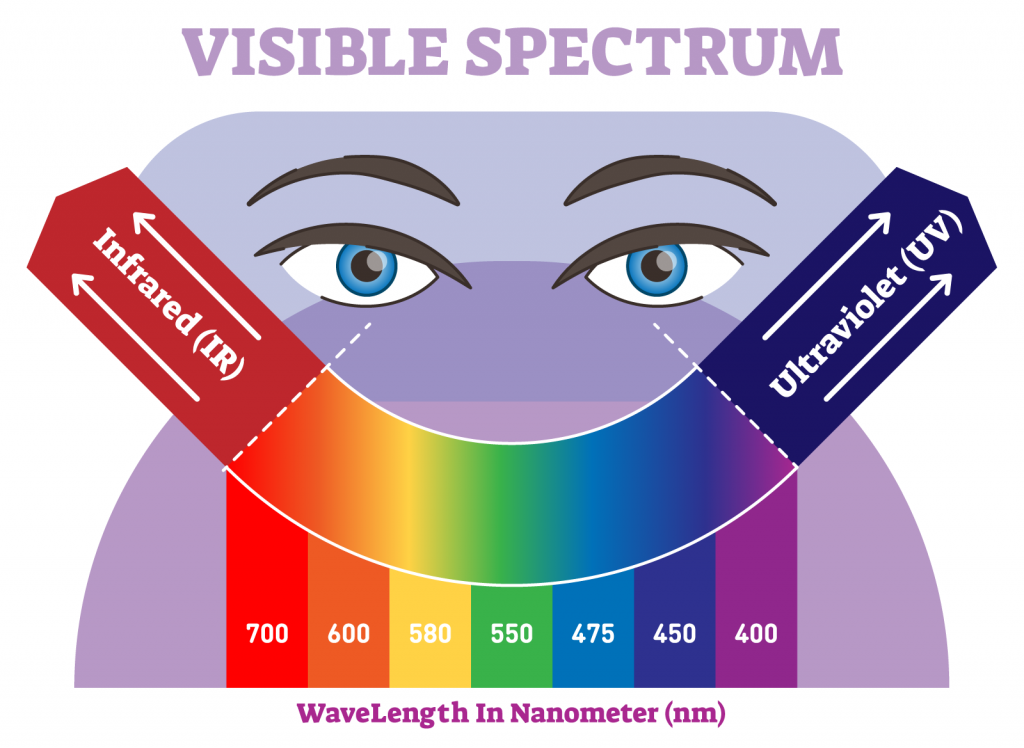 Visible light spectrum color scale with wavelengths in nanometer